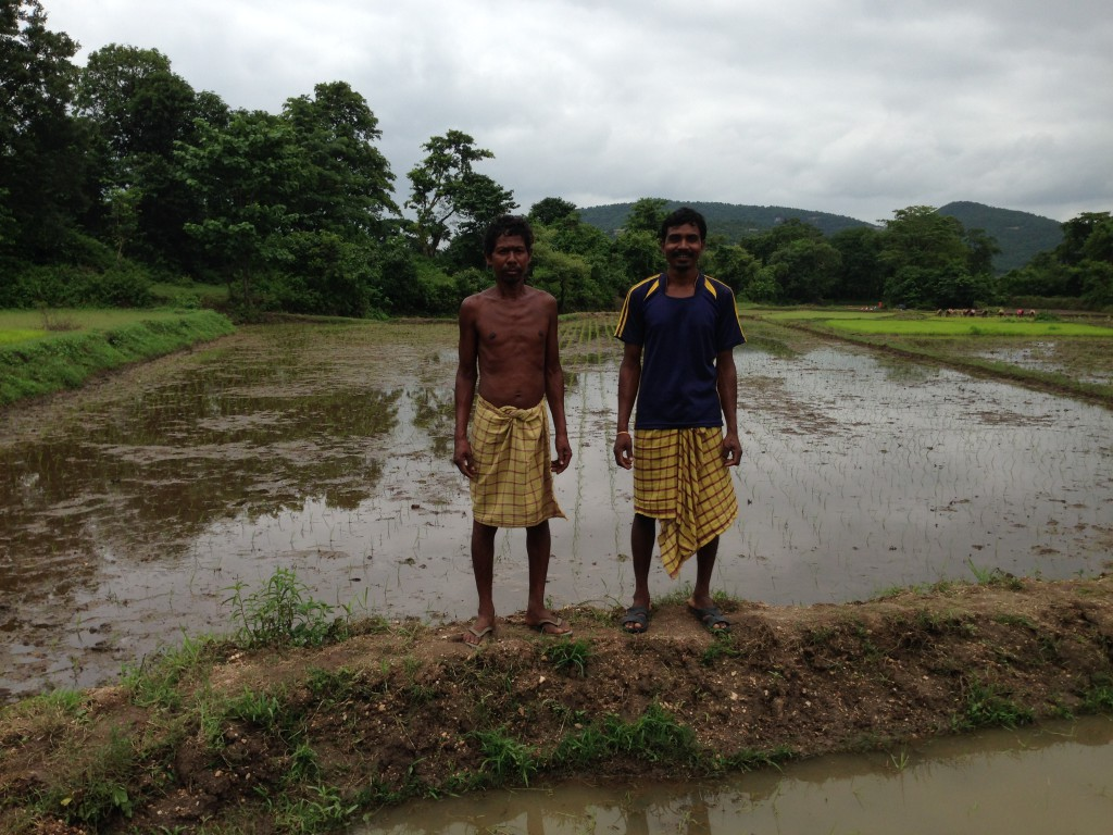 A Rice farmers Gambner Murmu and Amulya Mandi